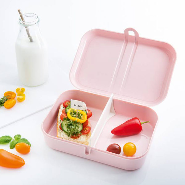 Large Lunch Box Pascal L Brand Koziol Friends4friends Pl